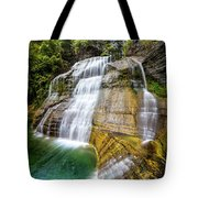 Lower Falls Profile At Enfield Glen Tote Bag