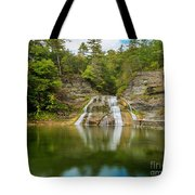Lower Falls Reflection Of Enfield Glen Tote Bag