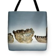 Lower Jawbones Tote Bag
