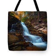Lower Kaaterskill Falls Tote Bag
