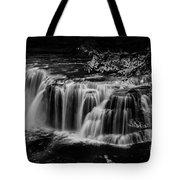 Lower Lewis Falls Washington State Tote Bag