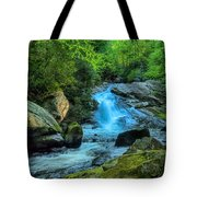 Lower Lynn Camp Falls Smoky Mountains Tote Bag