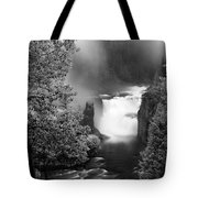 Lower Mesa Falls Tote Bag
