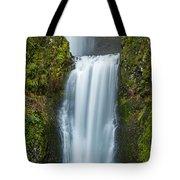 Lower Multnomah Falls Tote Bag