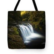 Lower Punchbowl Falls 1 Tote Bag