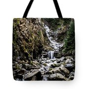 Lower Reid Falls Tote Bag