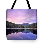 Lower Seymor Lake Tote Bag