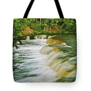 Lower Tahquamenon 6200 Tote Bag