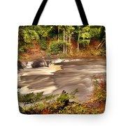 Lower Tahquamenon Falls 1 Tote Bag
