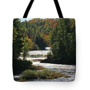 Lower Tahquamenon Falls  4349 Tote Bag
