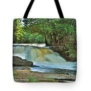 Lower Tahquamenon Falls Tote Bag