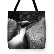 Lower Vernal Stream Tote Bag by Charmian Vistaunet