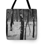 Lowland Winter Tote Bag