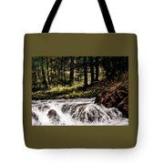 Lucia Falls In July Tote Bag