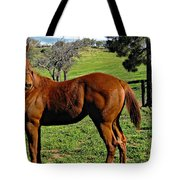 Lucky Student Tote Bag