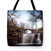 Lumb Falls Panoramic Tote Bag