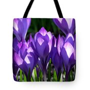 Luminous Floral Geometry Tote Bag