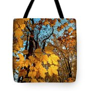 Luminous Leaves Tote Bag