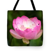 Luminous Lotus Blossom Tote Bag
