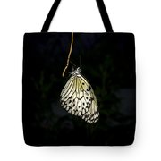 Luminous Paper Kite At Rest Tote Bag