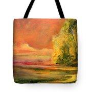 Luminous Sunset 2-16-06 Julianne Felton Tote Bag