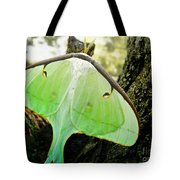 Luna Moth No. 3 Tote Bag