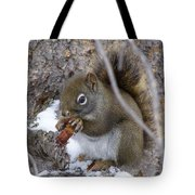 Lunch On The Patio Tote Bag