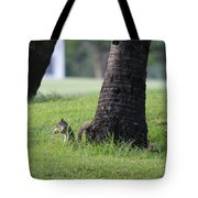Lunch Time? Tote Bag