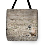 Lunch Time Tote Bag by David Buhler