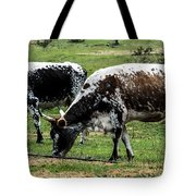Lunch With A Friend Tote Bag