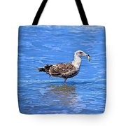 Lunchtime At Coronado Beach Tote Bag