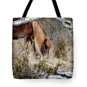 Lunchtime For Gokey Go-go Bones Tote Bag by Assateague Pony Photography