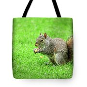 Lunchtime In The Park Tote Bag