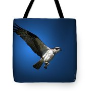 Lunchtime Treat Tote Bag