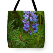 Lupin And Guest Tote Bag
