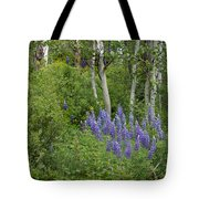 Lupine And Aspens Tote Bag