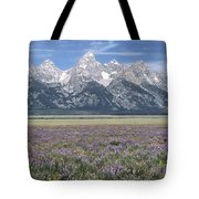 Lupine And Grand Tetons Tote Bag by Sandra Bronstein
