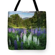Lupine In The Valley Tote Bag
