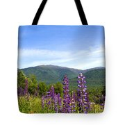 Lupines And The Presidentials Tote Bag