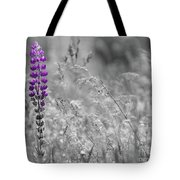 Lupins 2016 26a Tote Bag