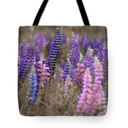 Lupins 2016 28a Tote Bag