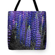 Lupins 2016 34a Tote Bag
