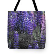 Lupins 2016 35a Tote Bag