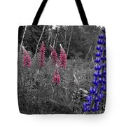 Lupins 2016 4a Tote Bag