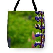 Lupins 2016 7 Tote Bag