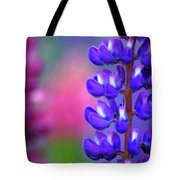 Lupins 36 Tote Bag