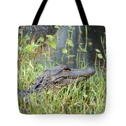 Lurking In The Grass Tote Bag