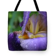 Luscious Blooming Iris Tote Bag