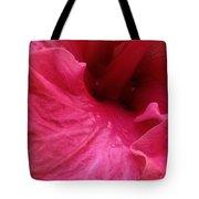 Luscious Pinks Tote Bag