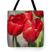 Luscious Tulips  Tote Bag